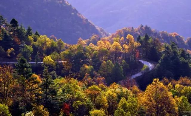 """镇坪位于安康最南部,有""""大巴山最后的秘境""""——飞渡峡景区"""